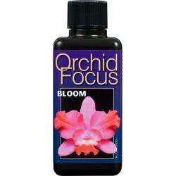 Orchid Focus Bloom 1L
