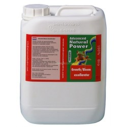 Growth Bloom Excellerator 250ML